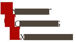 Andermatt Consulting Experience Inc.